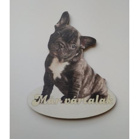 Ajtótábla francia bulldog fekete